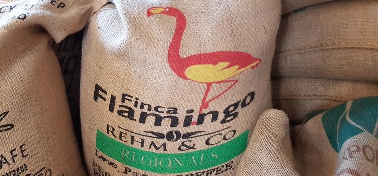 Finca el Flamingo